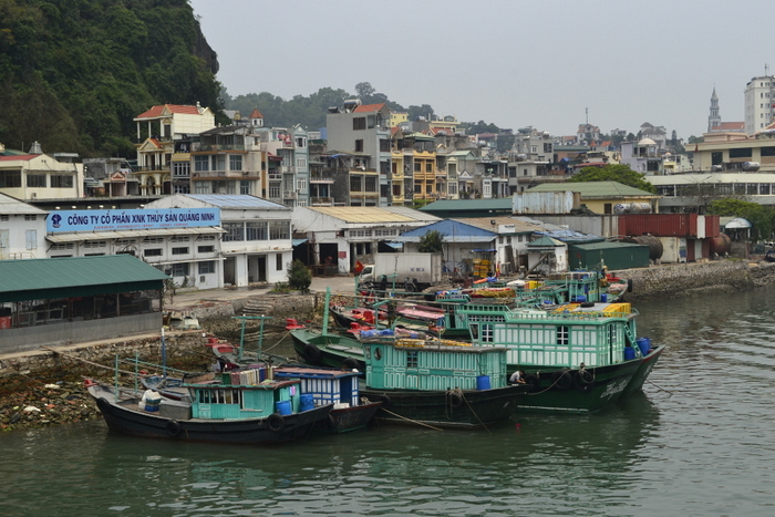 Gdzieś za Ha Long City